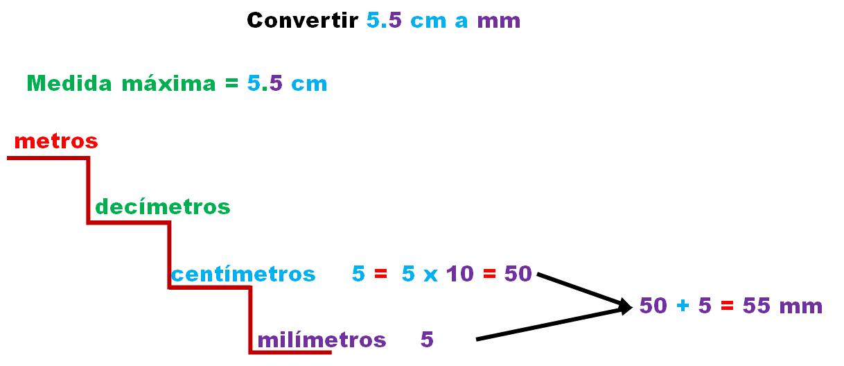 Cu ntos mil metros puede medir un colibr zunzuncito desaf os matem ticos - Pasar de metros a metros cuadrados ...